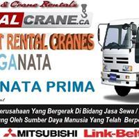 Rental Truck Crane