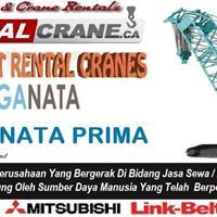 Rental Crawer Crane