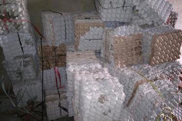 Papan Telur Egg Tray karpet Karton kardus bekas u Jangkrik