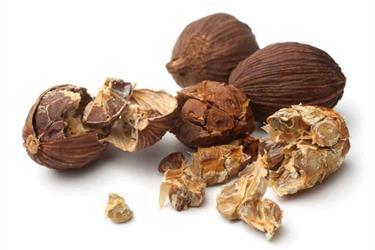 Herbal Kapulaga