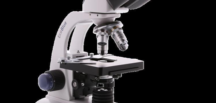 Jual Mikroskop Euromax Trinocular