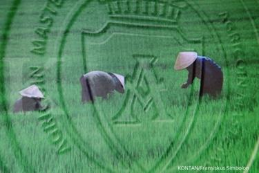 HART, kripto untuk data pertanian di Indonesia akan segera dijual ke publik