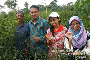 Pasar Lelang Beri Kesempatan Petani Dapatkan Harga Tertinggi